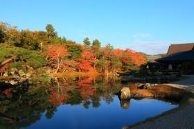 朝一番で訪問すべし!紅葉庭園が美しい京都嵐山の「天龍寺」