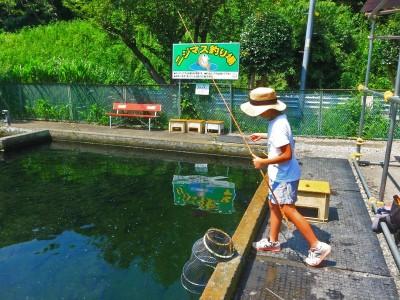 ORICON NEWS|オリコンニュース横浜都市圏で釣りを楽しもう!大和市「草柳園フィッシングセンター」