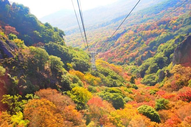 サムネイル ベストシーズンは秋!写真映え必至の「小豆島」は紅葉の季節がおすすめ