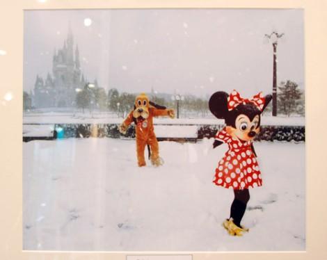 ミッキーマウスが撮影した写真