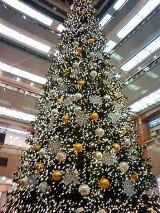 """日本橋三越本店に登場した、高さ15mの""""環境配慮型クリスマスツリー"""""""