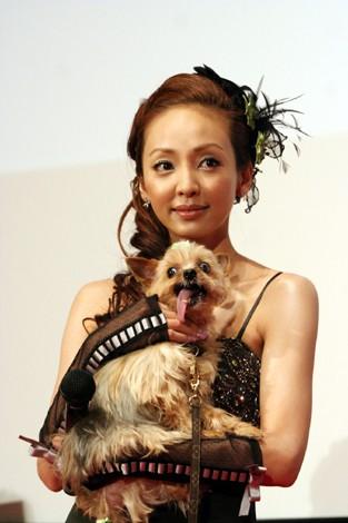 神田うのと愛犬のロケット