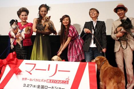 左からデヴィ夫人、神田うの、ベッキー、研ナオコ、金子貴俊