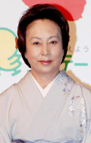 舞台『放浪記』の製作発表会見に出席した山本陽子