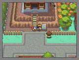 ニンテンドーDSソフト 『ポケットモンスター ハートゴールド』『ポケットモンスター ソウルシルバー』のゲーム画面(※画面は開発中のもの) (c)2009 Pokemon. (c)1995-2009 Nintendo/Creatures Inc./GAME FREAK inc.