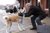 『HACHI 約束の犬』(C)Hachiko,LLC