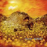7月1日発売の「Flower」通常盤ジャケット