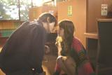 【2位】「図書館でのキス」(C)2009「天使の恋」製作委員会
