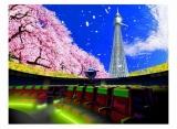 東京スカイツリーの東街区に開設される多機能型ドームシアターのイメージ