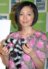 第2子の妊娠を発表した渡辺満里奈 (C)ORICON DD INC.