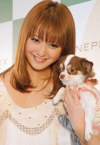 デジタルカメラ『FinePix』の新CMで共演した愛犬のマロンと会見に出席した佐々木希 (C)ORICON DD inc.