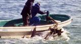 『ザ・コーヴ』(C) OCEANIC PRESERVATION SOCIETY. ALL RIGHTS RESERVED.