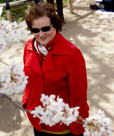 「美しい桜が印象的」と、桜咲き誇る千鳥が淵を散策し日本の春を満喫したスーザン・ボイル photo by Joel Anderson