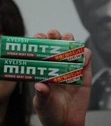 明治製菓から発売される本格ミントガム『MINTZ(ミンツ)オリジナルグリーン』