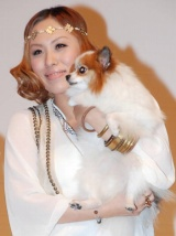 映画『きな子〜見習い犬の物語〜』の愛犬家トークショーイベントに愛犬と共に出席したMetis (C)ORICON DD inc.