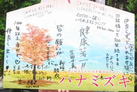 新垣結衣と生田斗真の願いごとが書かれた絵馬 (C)ORICON DD inc.