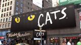 宮沢りえ演じるハローキティの視線の先には『CATS』が・・//『アーモンドプレミオ』(江崎グリコ)新CM