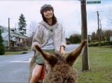 宮崎あおいが出演するクロスカンパニー『earth music&ecology』2010年秋新CM【ロバ篇】場面カット