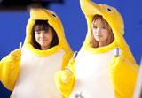 ペンギンの着ぐるみ姿もキュートな南明奈と広瀬アリス(左)/『クールミントガム』(ロッテ)新CMメイキングカット