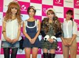 (写真左から)板橋瑠美、MEGUMI、桃華絵里、藤本美貴 (C)ORICON DD inc.