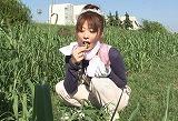 食べられる野草探しに勤しむ上原美優