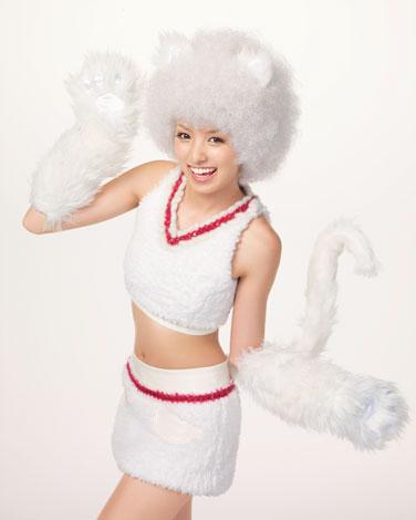 アッキーニャホワイトは6匹の中で一番ネコっぽい