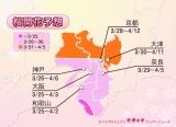 各エリアの桜開花予想日・近畿(画像提供:ウェザーニューズ)