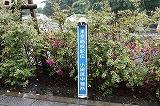 「箱根駅伝」で羽鳥が初実況した思い出の小田原中継地点