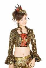 2011年4月から、ドリーム モーニング娘。としてツアーを開催