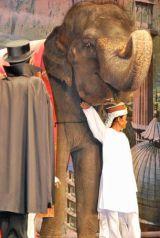 嵐・大野智が乗った重量4.1トンの巨大象 (C)ORICON DD inc.