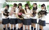 『ネ申テレビ』で実際に飼っているペットと共演するメンバー。左から、峯岸みなみ、岩佐美咲、藤江れいな、仁藤萌乃、近野莉菜、平嶋夏海(C)東北新社