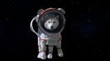 【CMカット】宇宙遊泳中にサンタと遭遇するお父さん