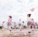 年間シングル5位「桜の木になろう」