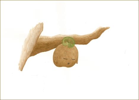 沢村一樹の絵本処女作『たねぽっくる 〜パパとママにはないしょのおはなし〜』(東京ニュース通信社)