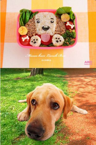 サムネイル 超食いしん坊で、ちょっぴりおばかなところも可愛いまさお君がキャラ弁に!