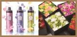 rechercher×Nicolai Bergmann Flowers&Design プレゼントキャンペーン