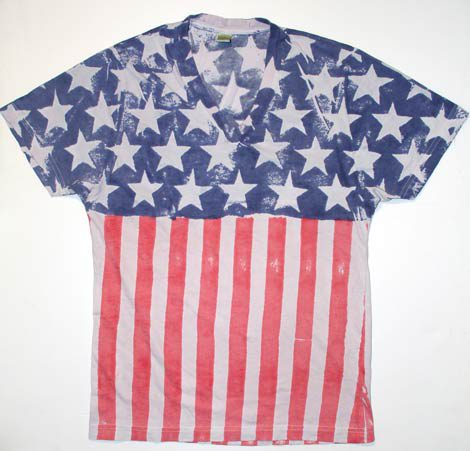 【ALTERNATIVE】USA PACK Vネックカットソー ¥5145