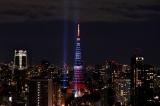 2本の光の塔と東京タワー。11月3日に行われたWOWOWスペシャルエンターテインメント「ドリーム・ライティングショー」の模様