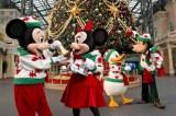 クリスマスツリーに飾り付けをするミッキーマウス達 (c)Disney