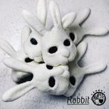 """主題歌は南流石、森 俊之、Watusi、佐藤タイジ、沼澤 尚、そして大塚 愛の6人から編成されるスーパーバンド""""・Rabbitの「泡ガール」"""
