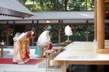 乃木神社で成人式を行った乃木坂46の松村沙友理、橋本奈々未、白石麻衣、衛藤美彩
