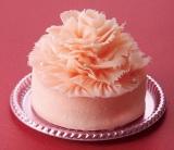 母の日にぴったりのカーネーションケーキ