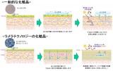 肌乾燥を防ぎ、紫外線A波B波もブロックするラメラテクノロジー製法を開発した(図)