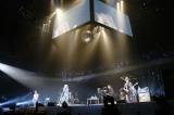 活動休止前ラストライブ 『SOPHIA TOUR 2013 未来大人宣言』最終公演を行ったSOPHIA