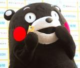 癒し系の表情を浮かべるくまモン=『ゆるキャラグランプリ 2013』開始記念イベント (C)ORICON NewS inc.