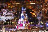 「おもはらの森」クリスマスイルミネーション (C)oricon ME inc.