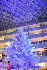 JPタワー商業施設・KITTE初のクリスマスイベント「WHITE KITTE」に登場した高さ約14.5メートルのツリー (C)oricon ME inc.