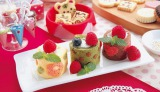 貝印は25日に、製菓キット『ミニロールケーキセット』(税込1050円)を発売