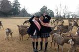 市川美織「奈良の鹿になりたいの〜!」