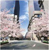 日本橋街づくりプロジェクトのイメージ画像